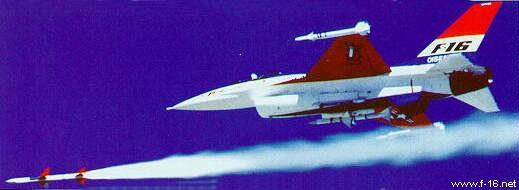 Sparrow Tester Pesawat yang digunakan untuk melakukan beberapa tes dengan AIM-7 Sparrow rudal. Hanya dengan pengenalan versi ADF dari F-16, kapasitas rudal BVR ditambahkan ke badan pesawat.
