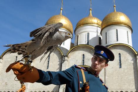 Petugas dengan hawk yang menjadi bagian dari pasukan burung elite
