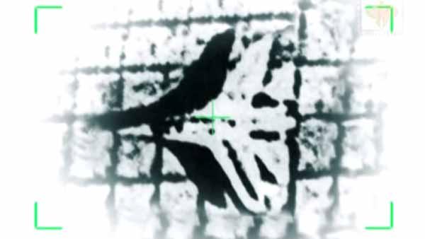 Foto dari citra satelit