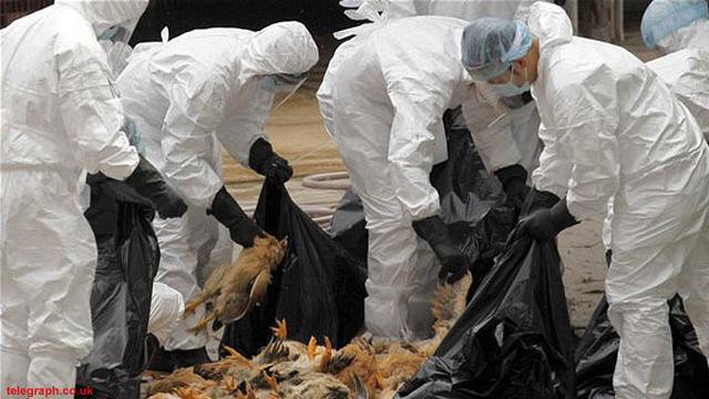 Virus Corona Masih Merajalela, China Temukan Jenis Baru
